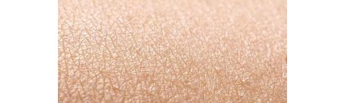 Ex Vivo Skin