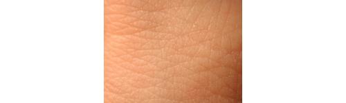 Frozen Human (Abdominal) Xeno Skin H - Squares over 25cm2